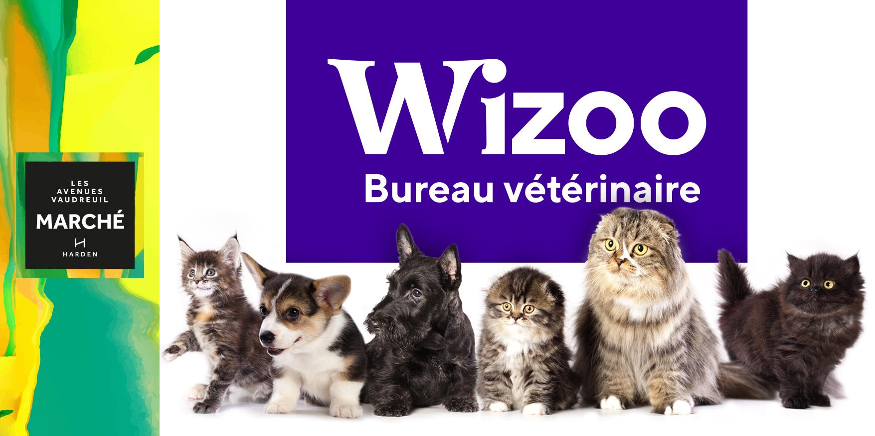 Groupe Vétérinaire Wizoo : Bientôt à l'Avenue Marché